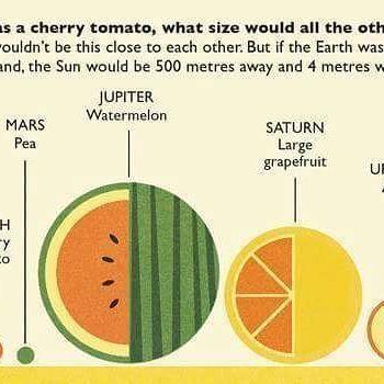 Se a Terra tivesse o tamanho de um tomate cereja, como seria os demais planetas do sistema solar? Uma interessante visão bem prática do tamanho dos planetas que dançam de roda conosco. Naturalmente é uma escala grosseira e não foi levado em consideração as distâncias do mesmos. #astronomy #science #education #infographic © Via Menrise.