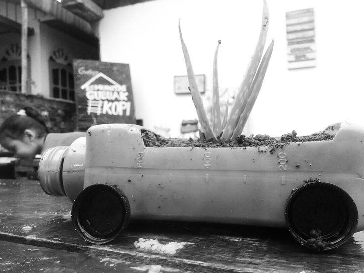 Bumbum Lidah Buaya  #botle #pot #flower #recycling