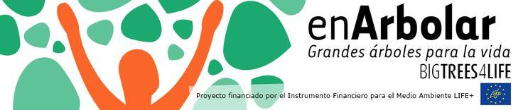 la Fundación Félix Rodríguez de la Fuente, con el objetivo de impulsar el desarrollo sostenible, proteger la biodiversidad y fomentar la promoción de las actividades, productos y servicios ligados al territorio, mejora la conservación de los árboles singulares y bosques maduros de la Red Natura 2000 y Red de Espacios Naturales Protegidos españoles y su territorio de influencia, a través del proyecto BIGTREES4LIFE.