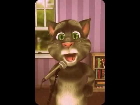 gato tom feliz cumpleaños-Video Divertidos para Compartir - YouTube
