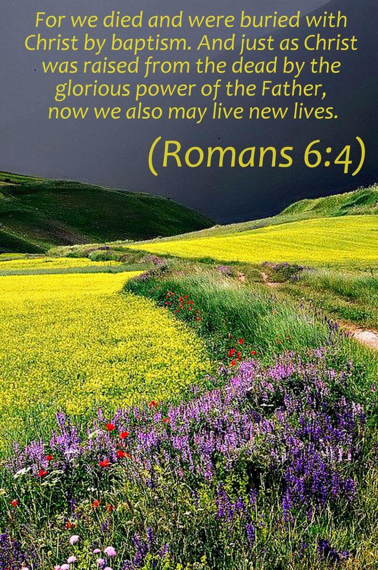 Romans 6:4 NLT