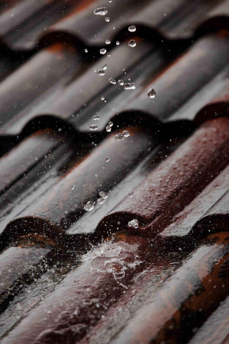 Chuva no telhado...