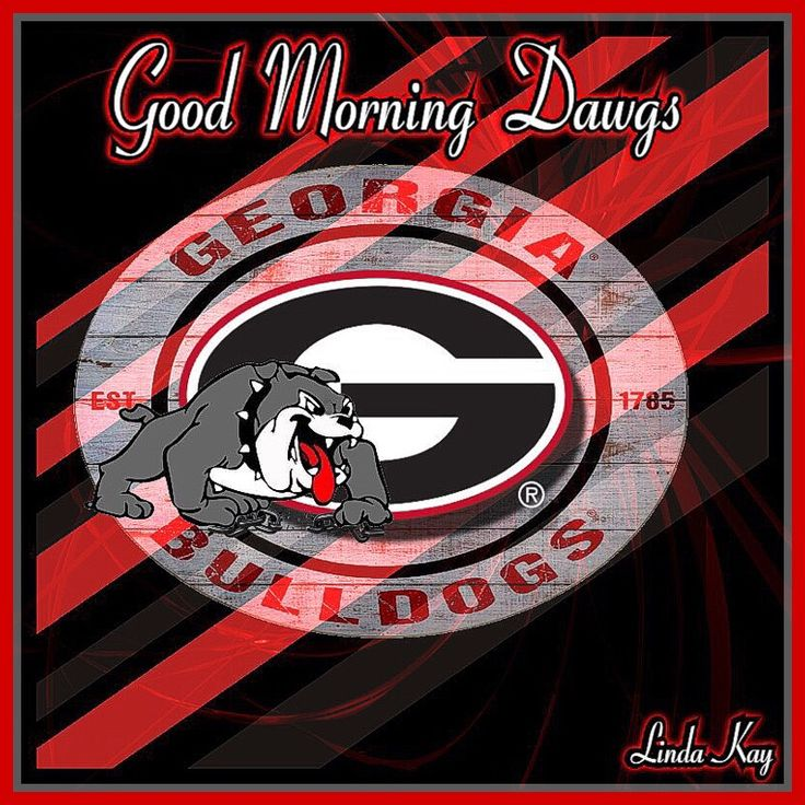 Pin by Rebecca Hollis on how bout them dawgs )