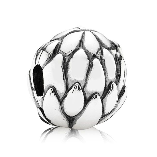 Pandora Clip On Earrings: 1000+ Images About Pandora Charms On Pinterest