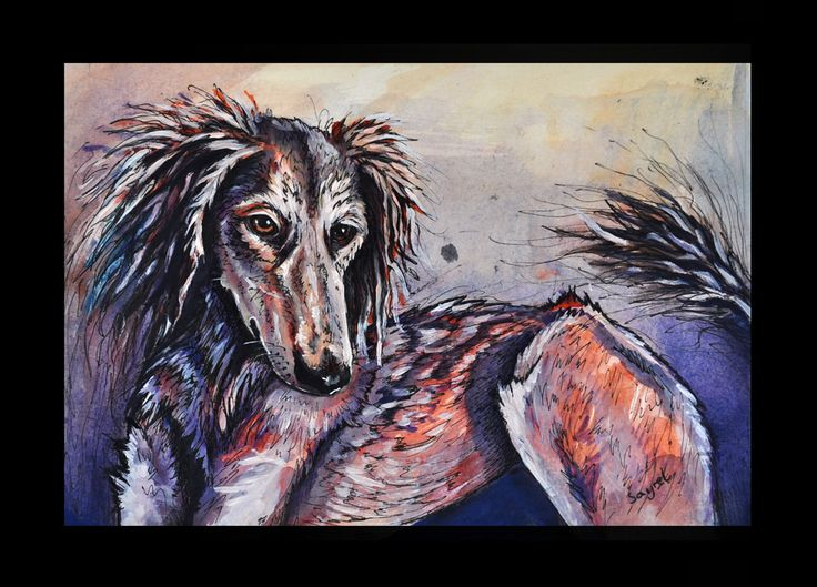 saluki dog - traditional painting