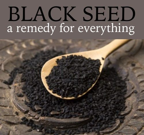 Black Seed – 'The Remedy For Everything But Death' — Improved Aging