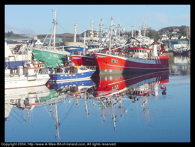 Fishing Fleet at Killybegs