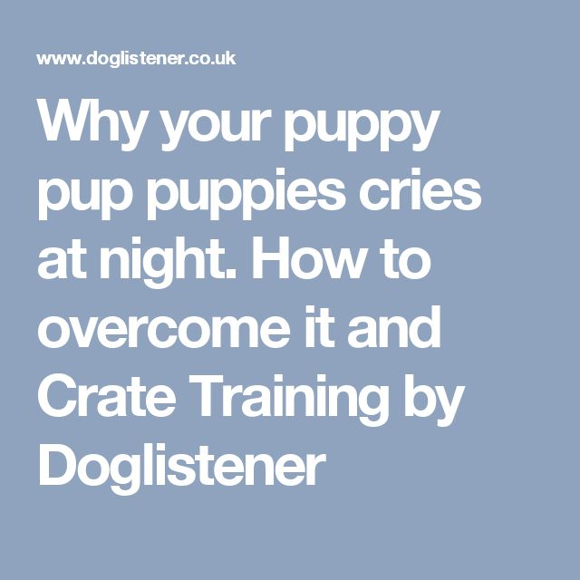 Why your puppy pup puppies cries at night. How to overcome it and Crate Training by Doglistener