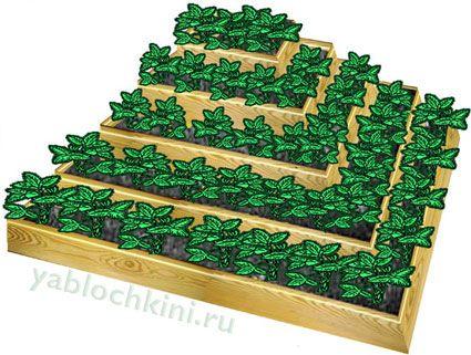 деревянная-пирамида