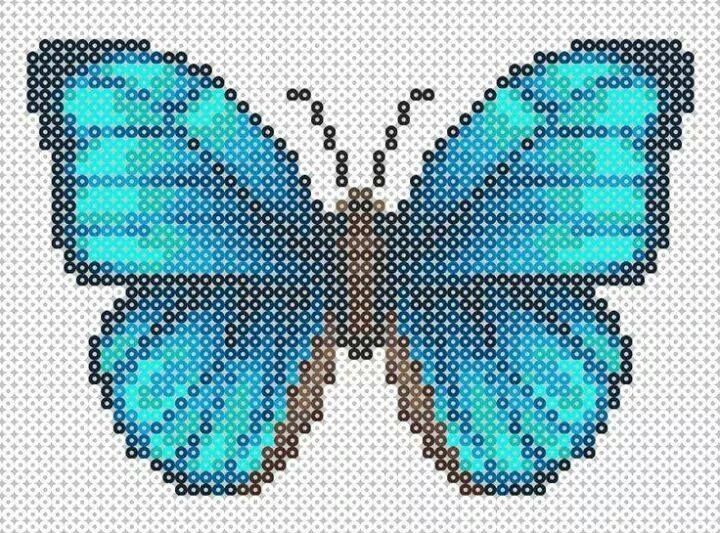 Butterfly vlinder