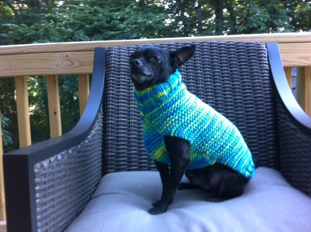 Blue Variegated Dog Sweater Hand Knitted. $13.00, via Etsy.: Dog Sweaters, Variegated Dog