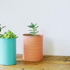 DIY – vasos de suculentas com latinhas