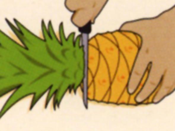 Ananas schneiden, Tipps, Tricks