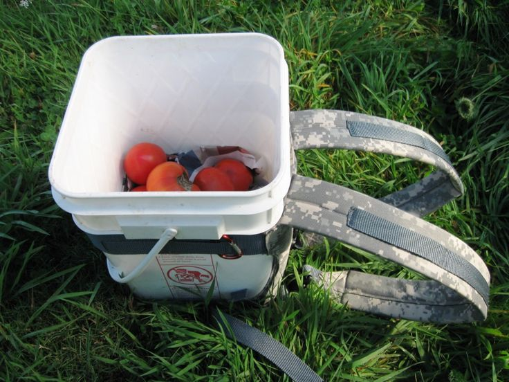 A strap-on backpack for five gallon buckets makes fruit picking easy