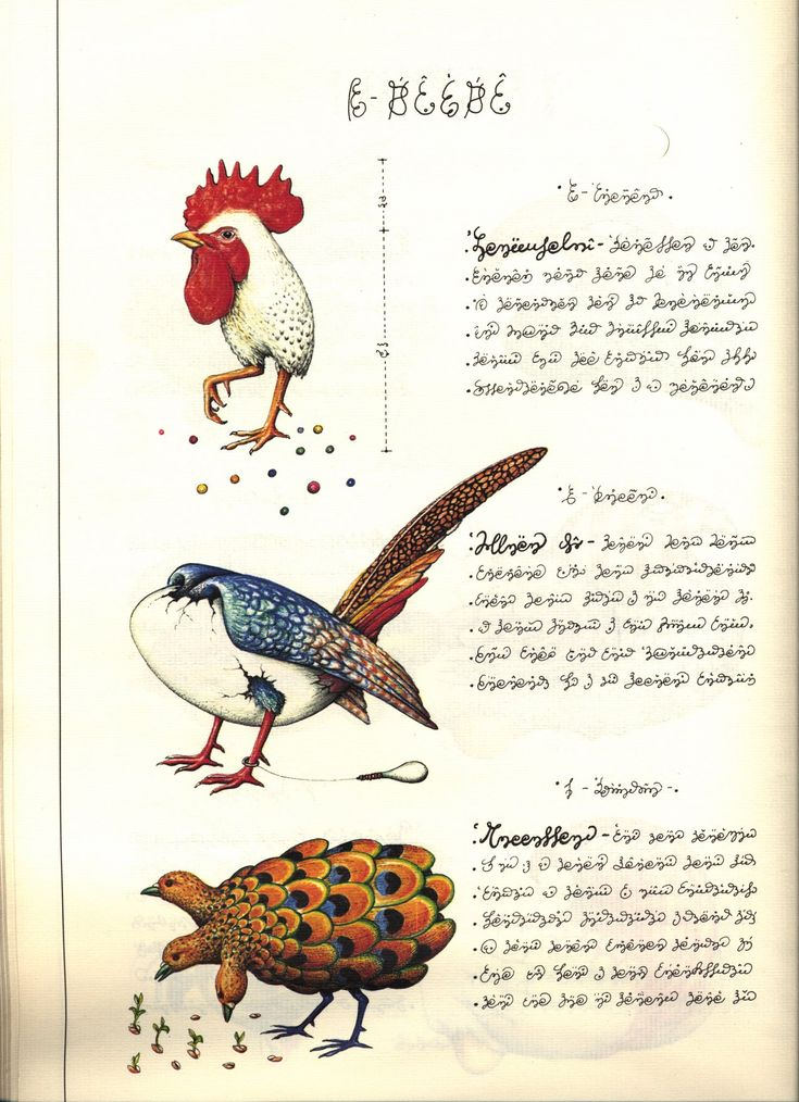 Codex Seraphinianus, Bizarre And Beautiful Art From An Alien World