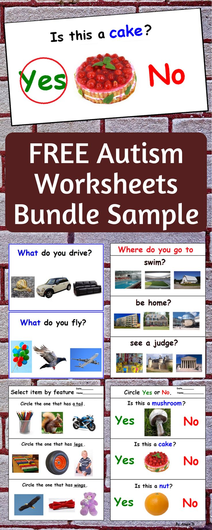 FREE Sample of Wh Questions for Autism Bundle. #autism #free #teacherspayteachers #tpt #worsheets #freeresources #speechtherapy For more resources follow https://www.pinterest.com/angelajuvic/autism-and-special-education-resources-angie-s-tpt/