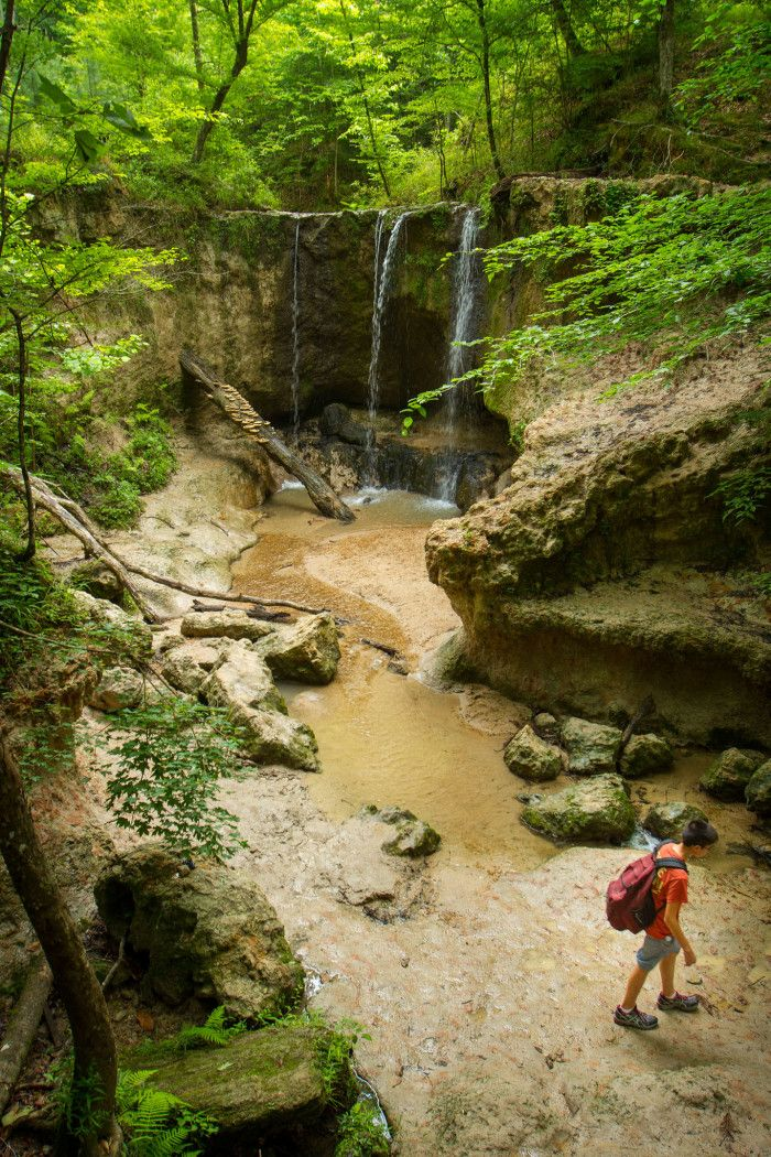 Mississippi Travelers -  check out Clark Creek Nature Area, Woodville @visitms