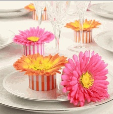Striped Gerber Daisy Favor Boxes - Modern Daisy Favor Boxes