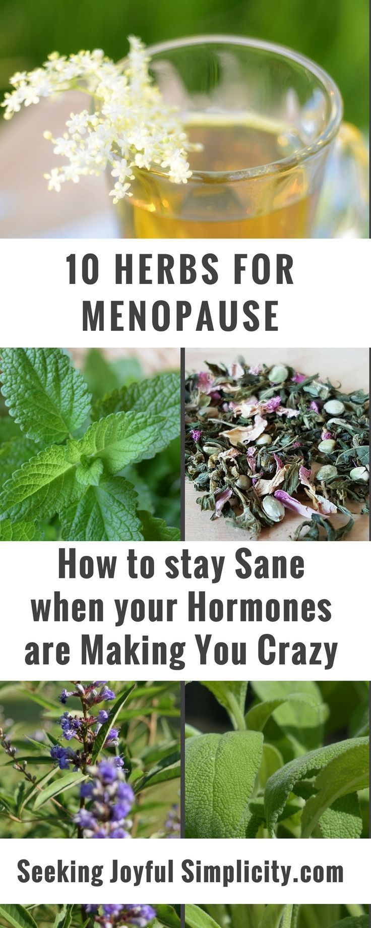 The best herbs for menopause - how to stay sane when your hormones are making you crazy. Herbs for menopause have a long history of use in supporting women's health and they can offer us relief, bring balance, and support deep healing. Check out these 10
