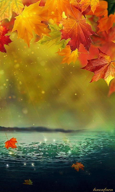 Осень анимация в картинках на телефон