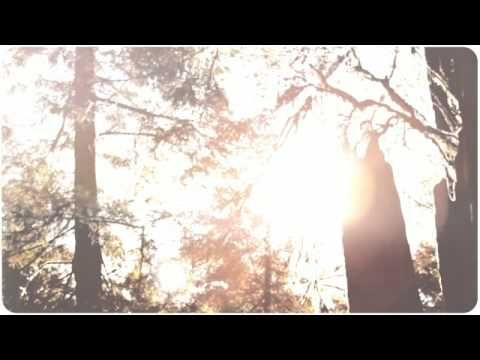 Book Trailer for Among the Hidden by Margaret Peterson Haddix - YouTube