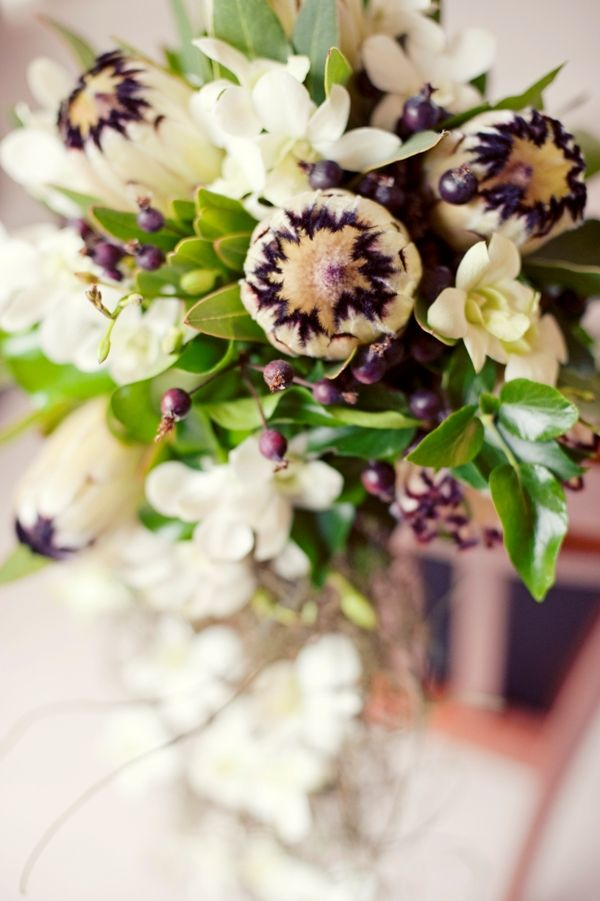 Australian Wedding featuring gorgeous White Minks