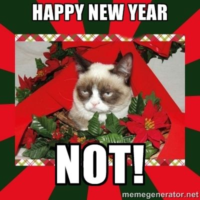 89bdd70eecfa4fea8302c0a57da0cc96 christmas meme grumpy cat christmas 222 best happy new year images on pinterest happy new years eve