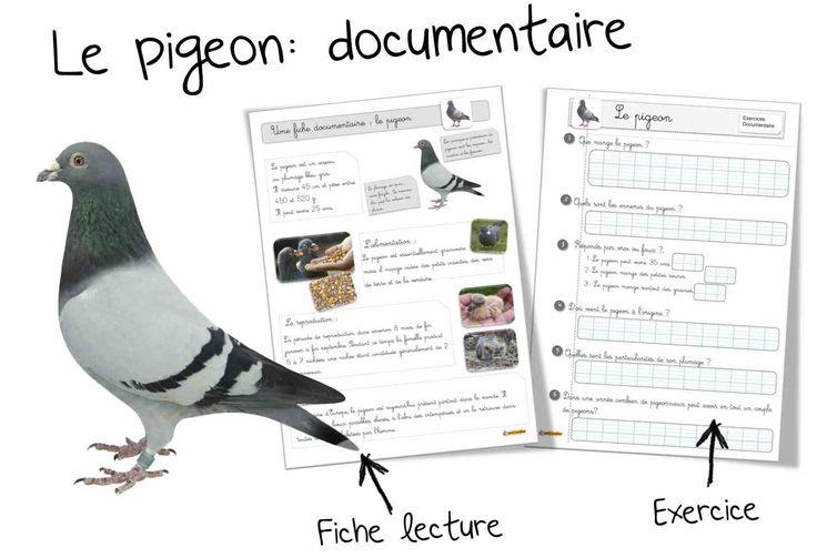 Fiche doc : Le pigeon Je recommence mon tour du monde cette année avec le Loup qui ( voir toutes...