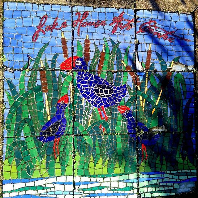 A mosaic that features on one of the paths at @lakehouserts with native New Zealand pukekos. #lakehousearts #outdoors #garden #mosaic #color #colorful #nz #bird  #handmade