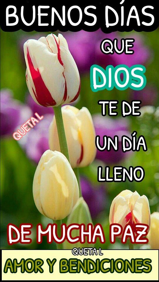 Feliz domingo bendiciones para todos los amigos que dios los bendiga