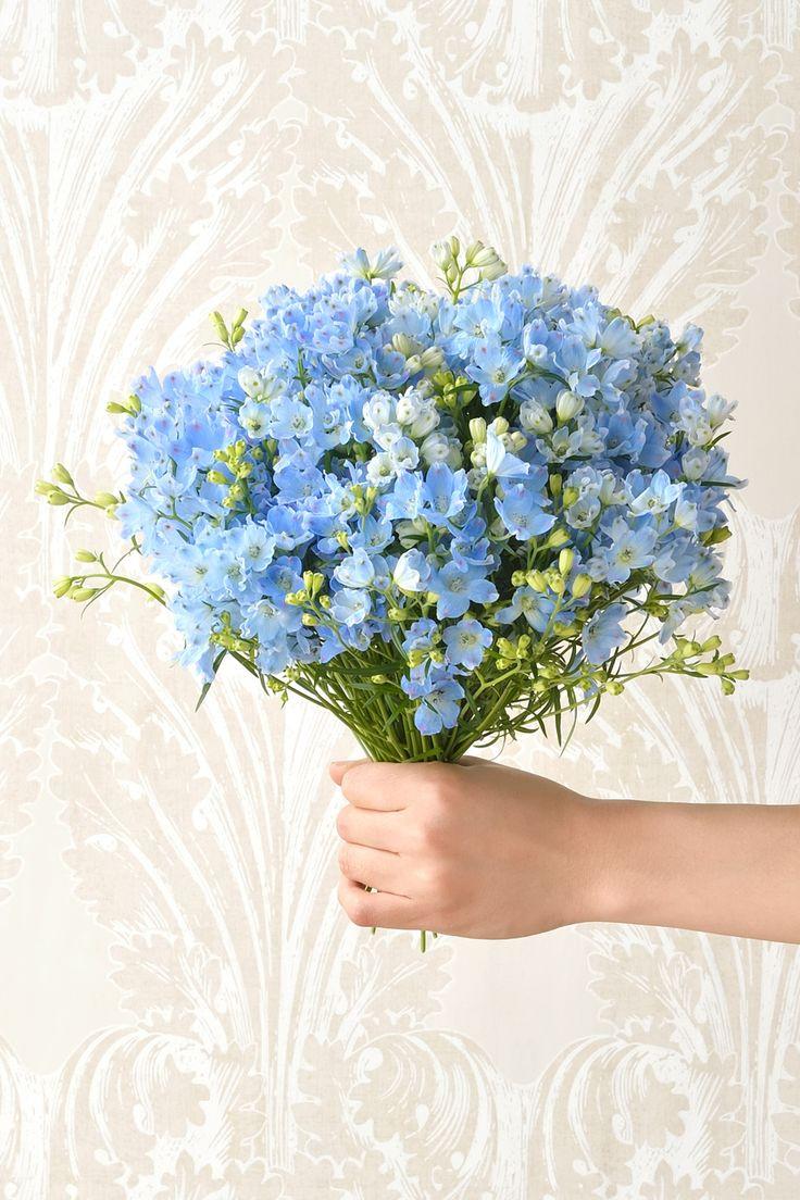 #wedding #bouquet #flower #blue #green #sweet #DILIGENCEPARLOUR #NOVARESE #ウエディング #ブーケ #フラワー #ブルー #グリーン #ディリジェンスパーラー #ノバレーゼ