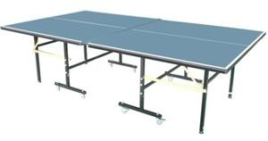 Swiftflyte table tennis or also known as ping pong in family setting.  Fun for all ages