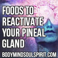 The mind's eye, scientifically known as the pineal gland, is considered to be the gateway to higher levels of consciousness. In case you wer...