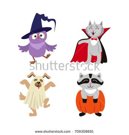 Image result for funny owl cartoon