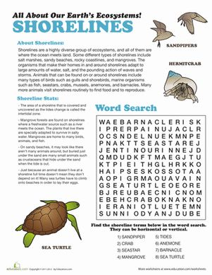 Who knew that the beach had its own diverse ecosystem? Learn all about the shoreline ecosystem with this fun worksheet!