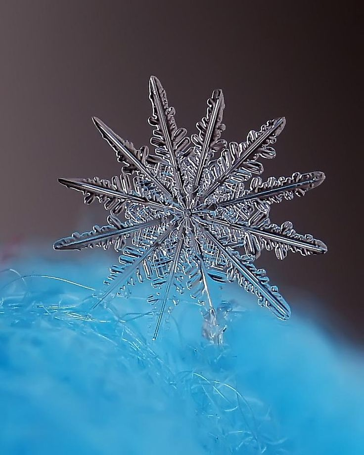 Wow a nice snowflake 211 best