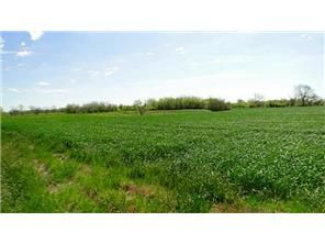 Excellent 1000 +- Ac Farm! Quality operation w. good road system, fenced perimeter, normal crops incl. corn, wheat, milo. Very versatile w. nice mix o