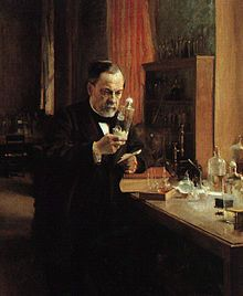 """Louis Pasteur (French,1822-1895) Chemist and microbiologist. Discover of the principles of vaccination, microbial fermentation, pasteurization, and prevention of diseases. Created the first vaccines for rabies and anthrax. Apply the germ theory of disease in clinical medicine. Pasteurize milk and wine to stop bacterial contamination. Discover the molecular basis for the asymmetry of certain crystals and racemization. He is known as the """"Father of Microbiology"""". (Wikipedia)"""