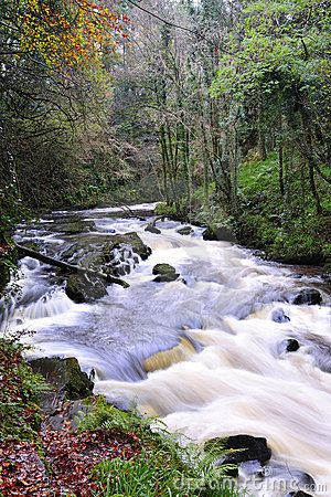The Clare River flows through Clare Glens on Tipperary and Limerick border, Ireland  Michael Walsh