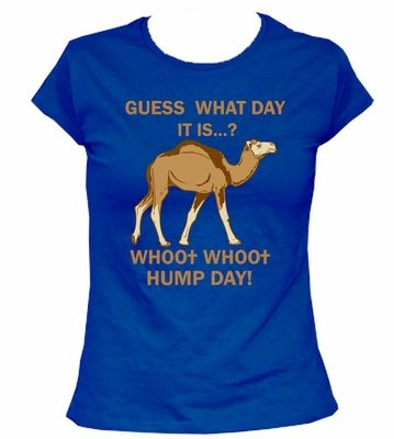 Hump Day Camel Women's T-Shirt XL - Love in Purple or Hot Pink!!