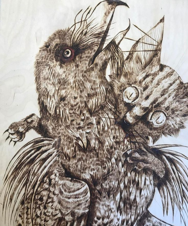 Awesome pyrography by first year Tanith Bull #art #fsfcfineart #fineart #pyrography #alevel #exams #exhibition #contemporaryart #modernart #alevelart #alevelfineart #farnboroughsixth #lineart #illustration #tone #bird #cat #animals #animalart #awesome #studentart #darkyellowdot #instaart #artoftheday #artofinstagram
