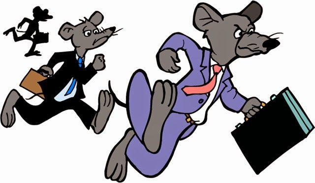 Почему сетевой маркетнг похож на крысиные бега
