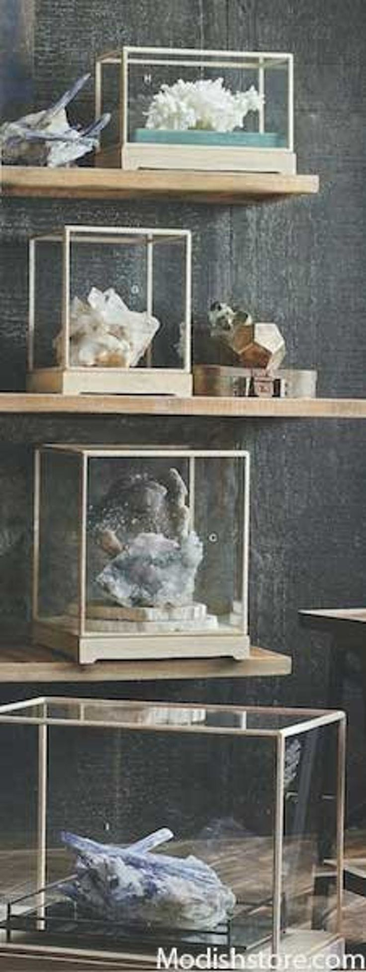 Roost Museum Display Cases - Set Of 5 -
