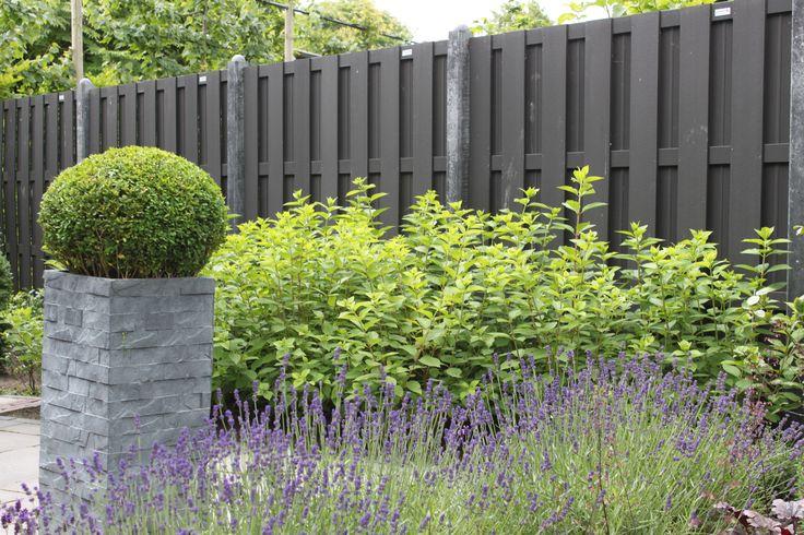 Moderne tuinafscheiding aangelegd door Van Oorschot Hoveniers #lavendel #schutting