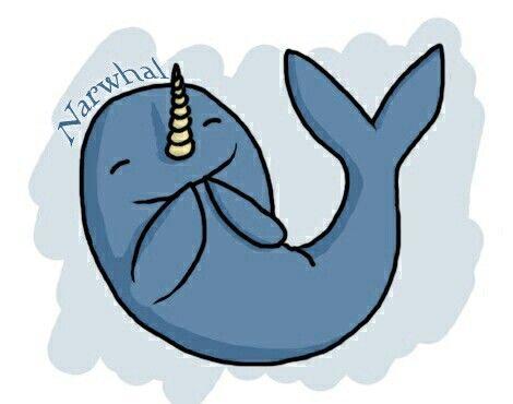 25 besten Narwals Bilder auf Pinterest | Narwale, Einhörner und Horn