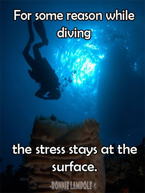 Amen to that! My peace is 45 feet under the ocean! #scubadiving ❤