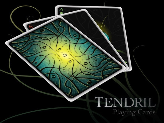 Cool deck of cards from Encarded.  Their project is fully funded, but get in on the Kickstarter deals while you can.