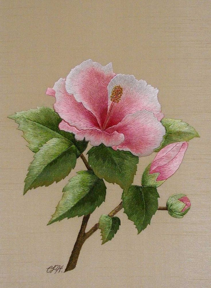 Hibiscus :: cithare                                           --- Absolutely BEAUTIFUL embroideries!!! No patterns but wonderful inspiration and beautiful workmanship!