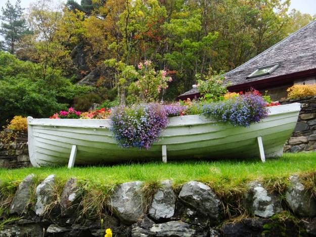 24 best boat planter ideaa images on pinterest water for Decorative pond fish crossword clue