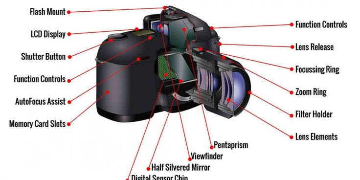 Guide To Basic Camera Parts and Functions - Important To